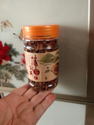 吉林吉林桦甸市蒲公英茶 罐装 1-2年 特级
