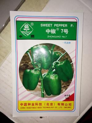 河北保定清苑县甜椒种子 90%以上 杂交种