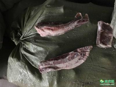 河南周口郸城县羊肉类 24个月以上 简加工