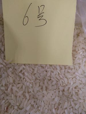 这是一张关于软米 非有机大米 中稻 二等品的产品图片