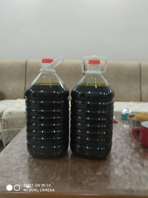 河南郑州登封市自榨纯菜籽油 5L以上