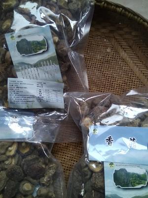 湖北黄冈罗田县原木干香菇 袋装 1年