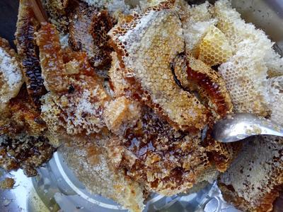 广西防城港上思县野生蜂蜜 玻璃瓶装 100% 2年以上
