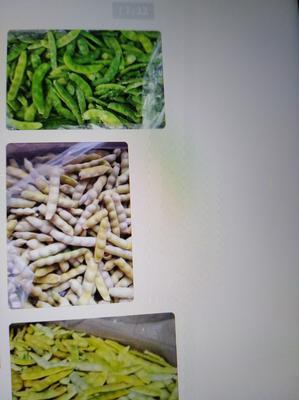黑龙江绥化肇东市黄豆角 6~8cm以上 打冷