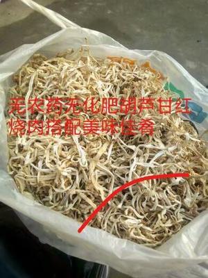 安徽省滁州市定远县胡芦甘 条状 散装 1年以上