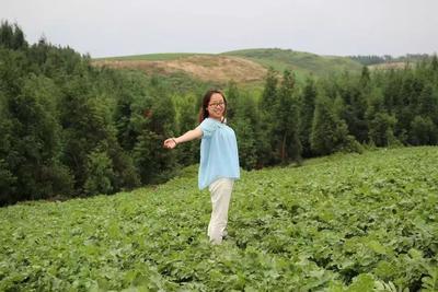 四川省乐山市峨眉山市新白玉白萝卜 2.5~3斤