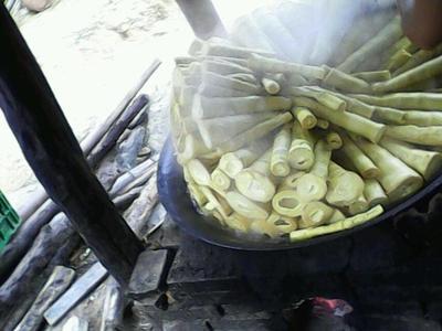 广西壮族自治区桂林市恭城瑶族自治县黄笋干 散装 1年以上