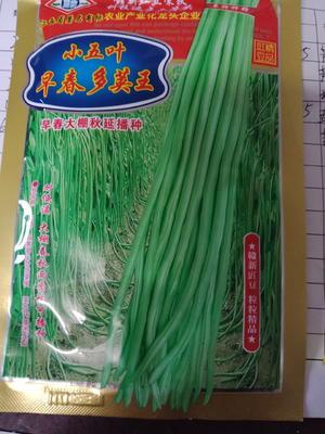 湖北省十堰市郧西县豆角种子 ≥98%