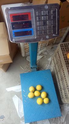 四川省资阳市安岳县安岳柠檬 1 - 1.5两