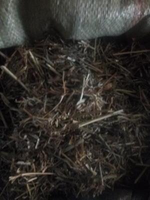 这是一张关于花生秧草料的产品图片