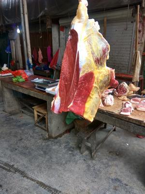 广西壮族自治区柳州市三江侗族自治县牛肉类 生肉