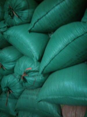 这是一张关于黄花粘 中稻的产品图片