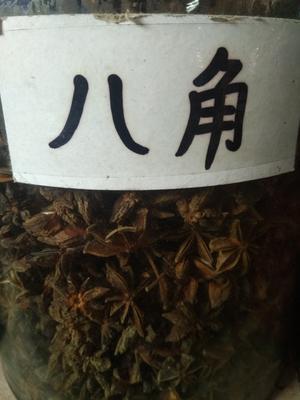 广东省佛山市禅城区普通八角