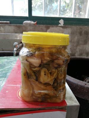 江苏省苏州市吴中区自腌儿菜 1个月