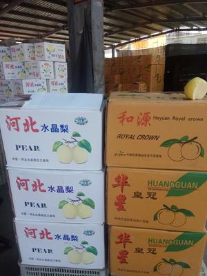 山东省济宁市市中区红蛇果 500克以上
