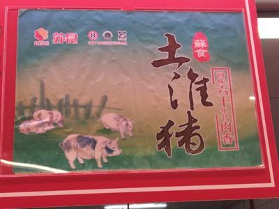 江苏省常州市武进区土猪肉 生肉