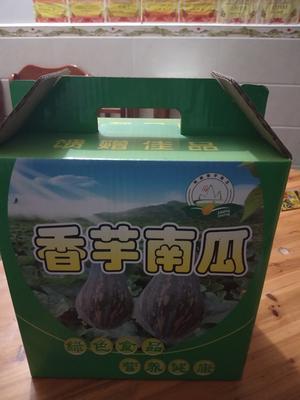 广西壮族自治区梧州市岑溪市香芋南瓜 2~4斤 其他