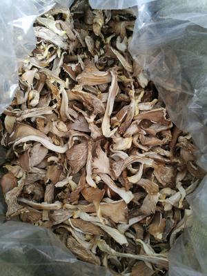 这是一张关于蘑菇干 3-5cm 厚 浅灰色 的产品图片