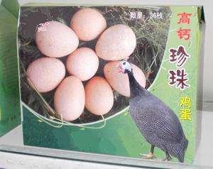 江西省赣州市寻乌县灰色珍珠鸡 4-6斤