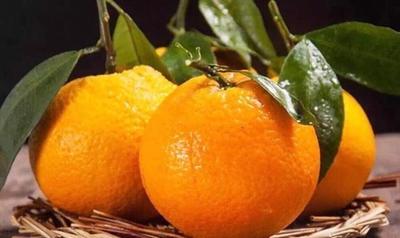 这是一张关于伦晚脐橙 70-75mm 4-8两 的产品图片