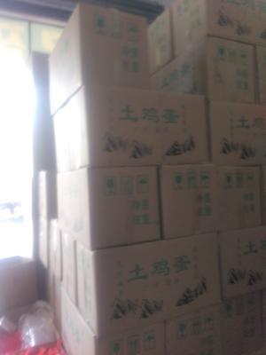 广东省中山市中山市土鸡蛋 食用 箱装