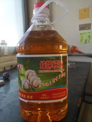 河北省保定市徐水县棉籽油