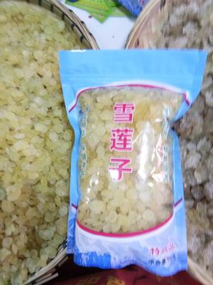 云南省昆明市五华区皂角米
