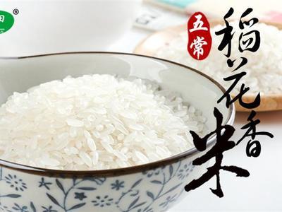 陕西省西安市雁塔区五常大米 绿色食品 早稻 一等品