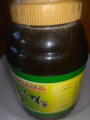 福建省泉州市洛江区龙眼蜜 塑料瓶装 95%以上 2年