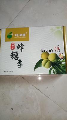 贵州省安顺市镇宁布依族苗族自治县蜂糖李 40 - 50mm