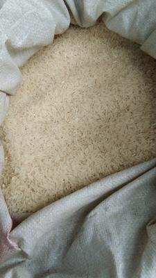 云南省红河哈尼族彝族自治州开远市云南软米 绿色食品 中稻 一等品