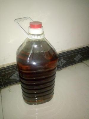 陕西省渭南市白水县纯菜籽油 4.5-5L
