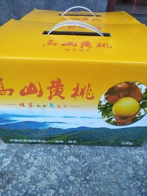 这是一张关于桂东高山黄桃 45mm以上 3 - 4两的产品图片