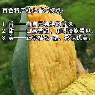 这是一张关于桂七芒 5两以上的产品图片