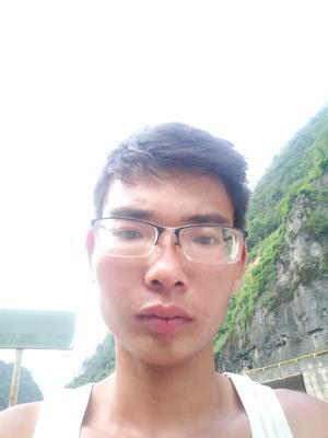 云南省昭通市大关县牛心甘蓝 1.5~2.0斤