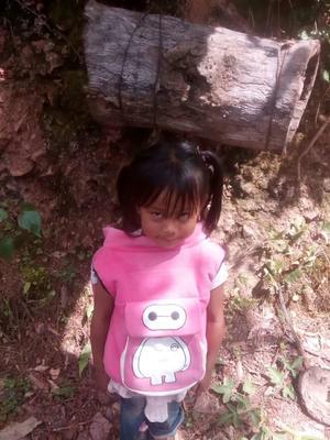 云南省普洱市镇沅彝族哈尼族拉祜族自治县土蜂蜜 散装 98% 2年
