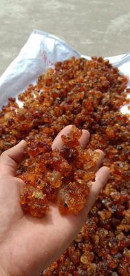 这是一张关于黄桃胶 6-12个月的产品图片