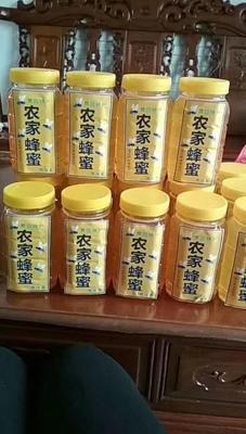 广东省河源市东源县土蜂蜜 塑料瓶装 100% 1年