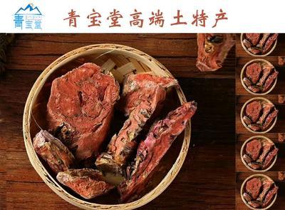 青海省西宁市城东区红景天