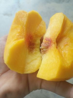 这是一张关于蒙阴蜜桃 60mm以上 4两以上的产品图片