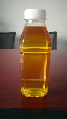 湖南省衡阳市耒阳市压榨一级山茶油