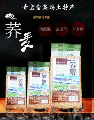青海省西宁市城东区普通荞麦