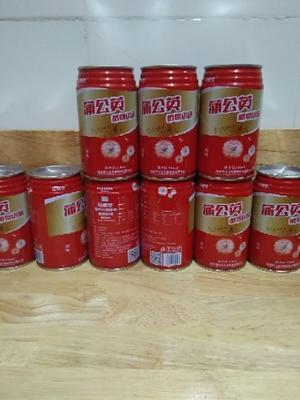 福建省龙岩市新罗区浦公英饮料 纸盒装 12-18个月