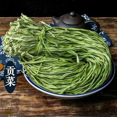 安徽省亳州市谯城区贡菜种子