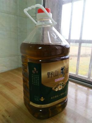 湖南省常德市桃源县野生山茶油