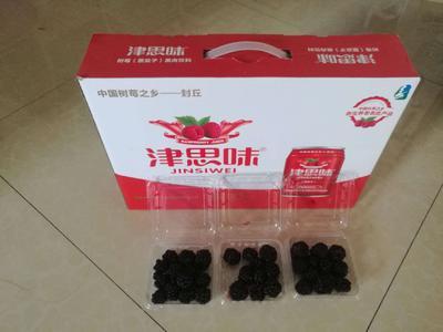 陕西省西安市未央区树莓果汁 易拉罐 6-12个月