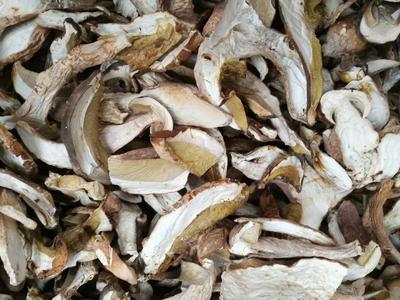 云南省昆明市禄劝彝族苗族自治县黄牛肝菌 野生 1.0%以下 1.0%以下 干货