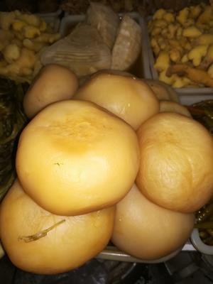 重庆江津区萝卜泡菜