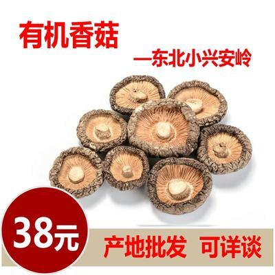黑龙江省伊春市伊春区干香菇0912 箱装 1年以上