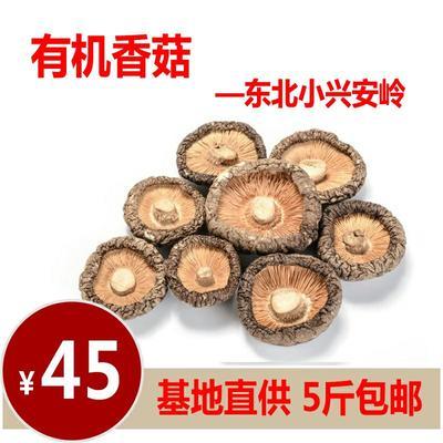 黑龙江省伊春市伊春区香菇片 箱装 1年以上